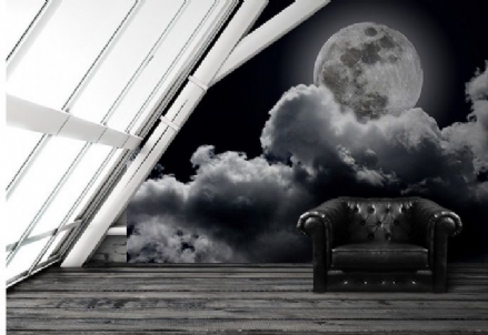 Full moon black & white wall mural